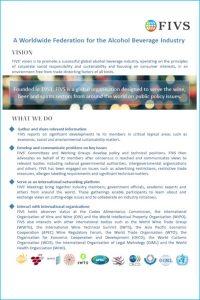 FIVS's Organisational Brochure