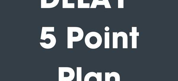 DELAY-5-Point-Plan